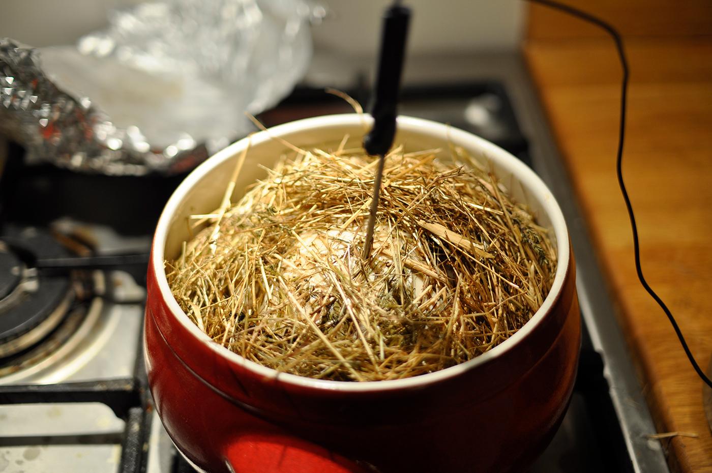 chicken-in-hay-6