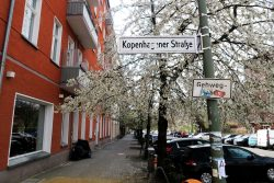 trip-to-berlin-2